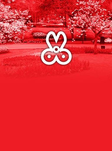 Servizi Giardinaggio Vicenza, Realizzazione giardini vicenza, Giardinere per vicenza e Provincia, progettazione aree verdi, aiuole e giardini a Vicenza e Provincia