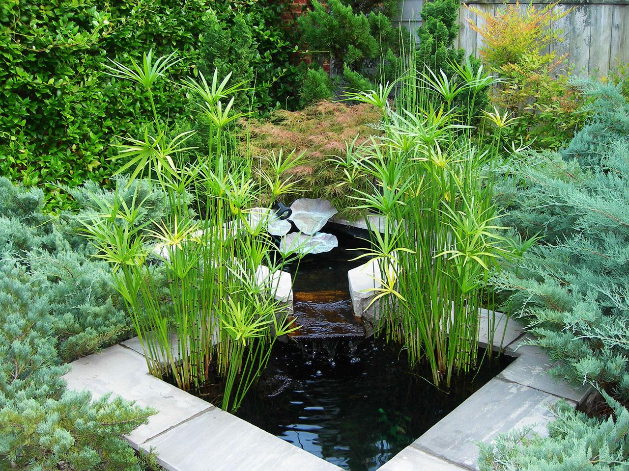Muretti e camminamenti per giardini trifolium vicenza for Cascadas jardin zen