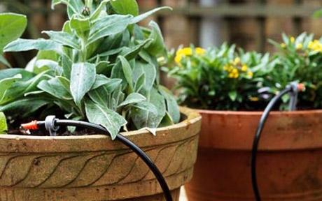 Impianti di Irrigazione e Fontane | Trifolium Giardini Vicenza