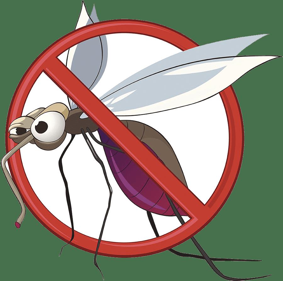 Trattamento Antizanzare