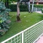 Manutenzione Giardini Vicenza