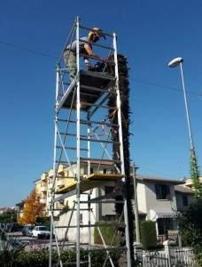 Abbattimento Alberi, Potatura Siepi a Vicenza